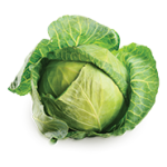 Products_0003_Cabbage