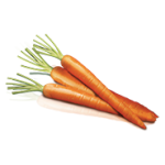 Products_0004_Carrot