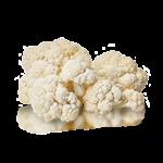 Products_0005_Cauliflower