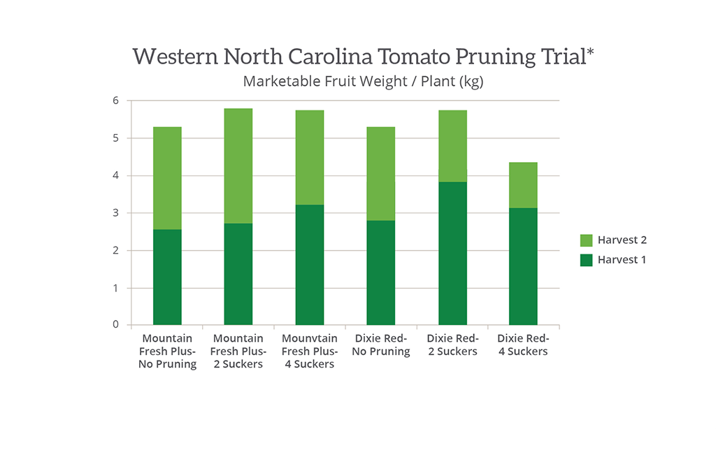 Western North Carolina - Marketable Fruit Weight