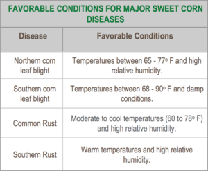 Favorable Conditions For Sweet Corn Diseases Table